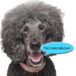 poodle-vulnerable